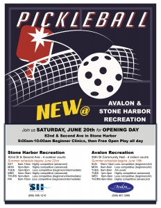 2015_pickleball_flyer_SH_AV-page-0