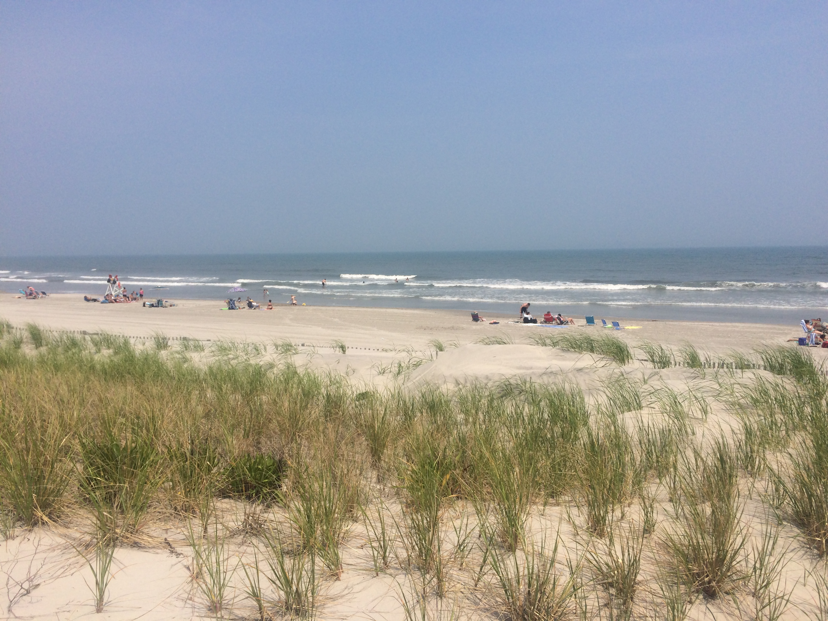 Special Spring 2018 Report On Condition Of Munil Beaches For Stone Harbor Nj
